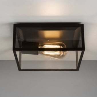 Bronte Ceiling Light in Black with Clear Glass
