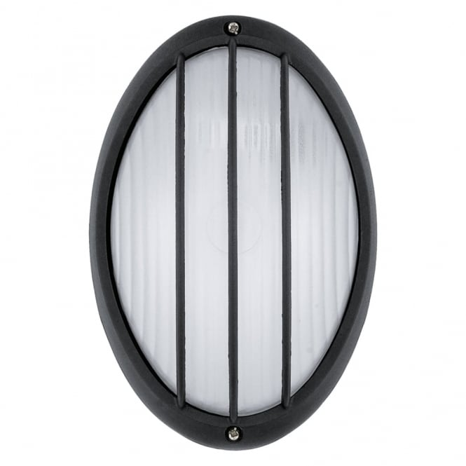 Eglo Siones IP44 Outdoor Wall and Ceiling Light in Black