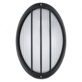 Siones IP44 Outdoor Wall and Ceiling Light in Black