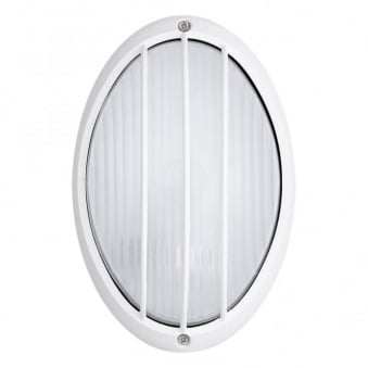 Siones IP44 Outdoor Wall and Ceiling Light in White