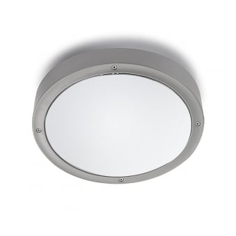 Basic Outdoor Light in Grey with Opal Diffuser